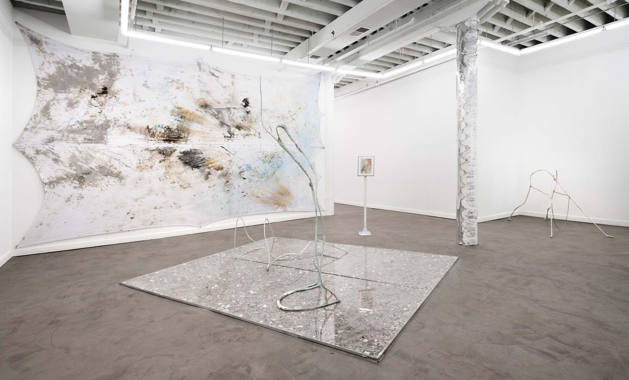 Flesh Club Installation view, Western Exhibitions, 2013