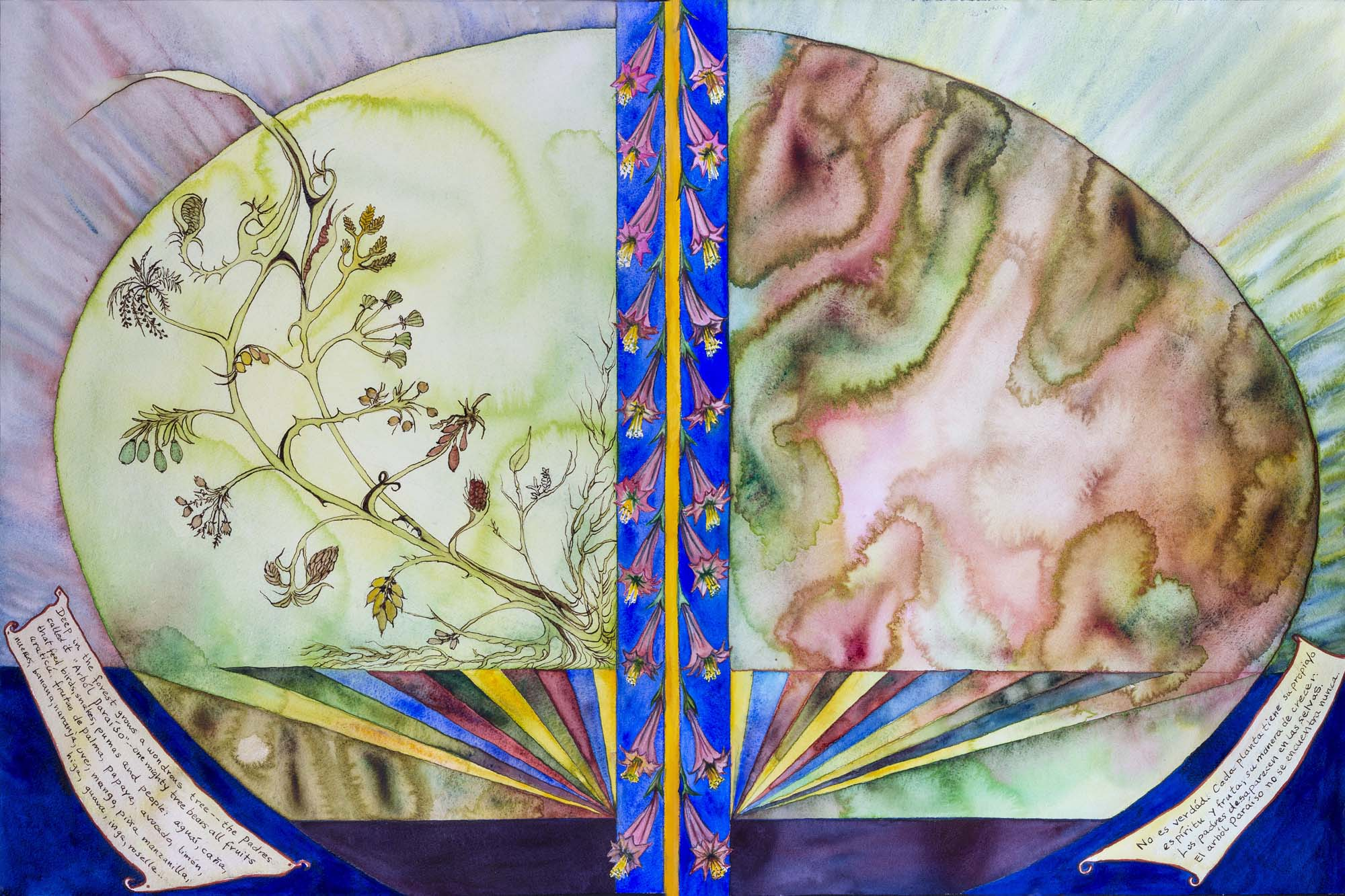 Tree of Life 2017, watercolor, prismacolor, ink on paper. Diptych. 24 x 36 in